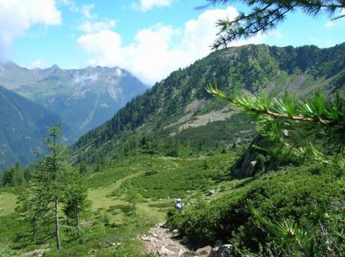Telve di Sopra - Val Trigona - Lagorai