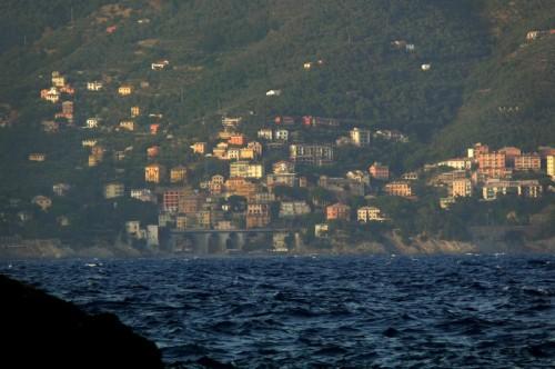 Zoagli - zoagli vista dalla strada per portofino