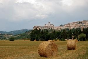 Assisi e i colori d'Umbria