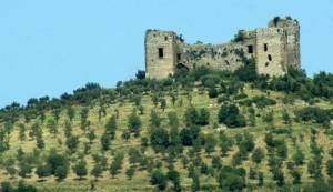 Un castello a  cinque torri
