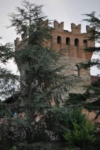 Rocca di Montalfeo2