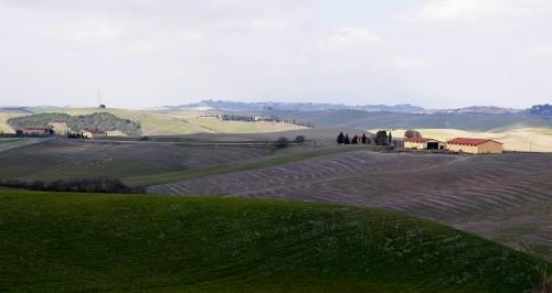 Lajatico - Colline di Lajatico (3)