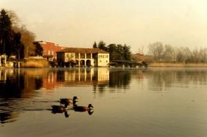 Una nuotatina romantica sul lago di Pusiano