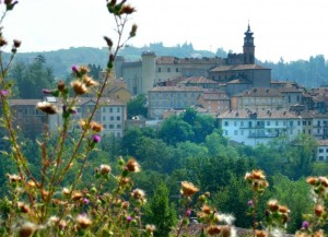 Panorama di Costigliole d'Asti