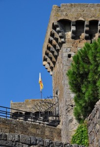 Rocca Monaldeschi della Cervara - Bolsena (VT) Foto n. 2