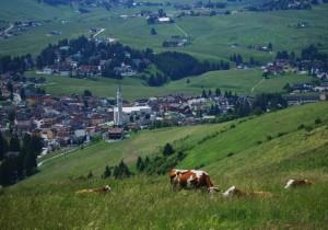 Gallio - salendo al monte Longara
