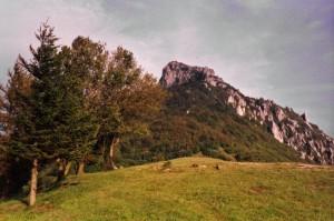 Rocca Barbena