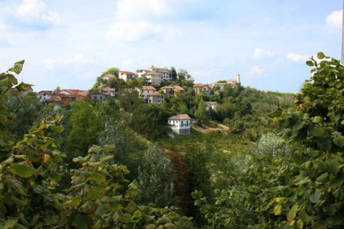 Cassinelle - Cassinelle panorama