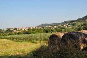 Panorama di Guardea (TR)