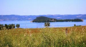 Panoramica sul paesaggio del lago con l'Isola Bisentina