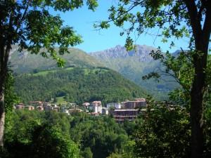 Cassina Valsassina tra gli alberi