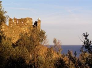 il guardiano del castello