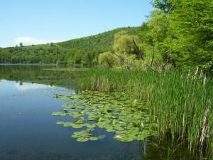 Ai laghi di Monticchio…