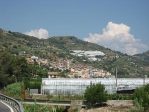 San Biagio tra le serre