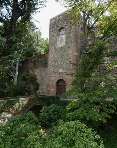 Rivalta di Torino - Castello di Rivalta (Gangsta Castle, lato serioso)