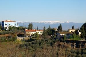 Ceppaiano (1)