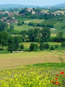 La frazione Colcavagno di Montiglio Monferrato