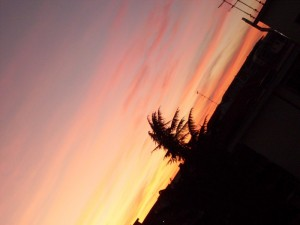 Black&Pink