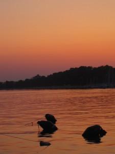 Porto al tramonto