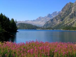 Lago Alpe Devero