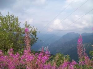 La Magia di Mera: natura, bellezza, tranquillità