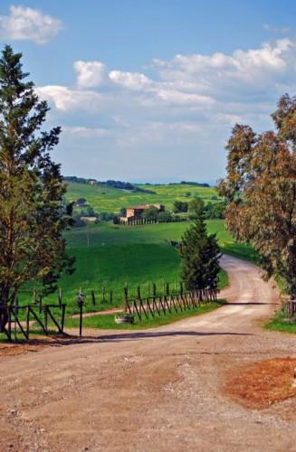 Montalcino - Campagna Toscana