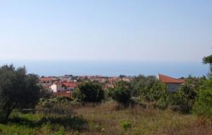 Zaccanopoli