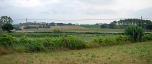 Galoppatoio