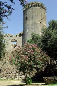 castello borgia 1
