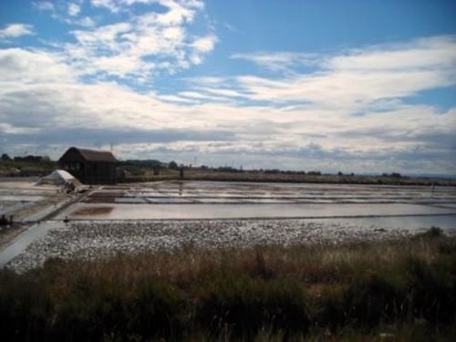 Cervia - Dolce terra del sale, Salina di Cervia