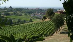 Panorama di Casteggio
