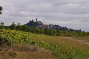 Frassinello monferrato