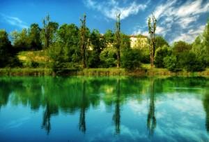 fiume mincio - Riflessi sull'acqua