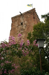 Il mastio di Rivalta, una giornata uggiosa