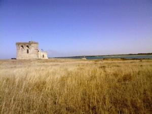 Riserva naturale statale Torre Guaceto