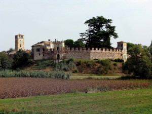 Castellaro Lagusello veduta del castello