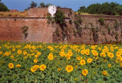 Sabbioneta - Il Bastione di Sant' Elmo
