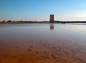 torre nubia paceco