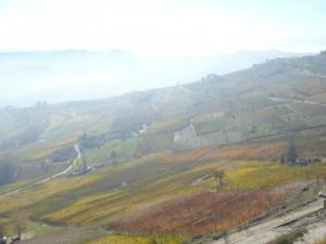 la valle e la nebbia