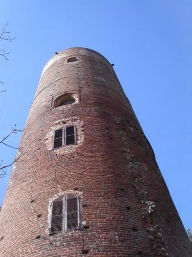 Montaldo Roero - torre di Montaldo Roero