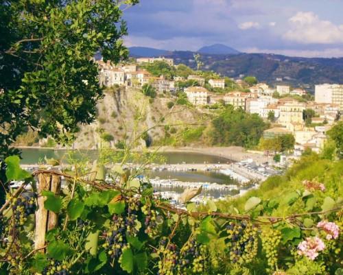 Agropoli - Bacco, Venere e Nettuno