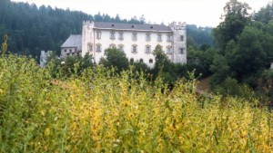 Castello di Casteldarne / Schloß Ehrenburg a Casteldarne di Chienes