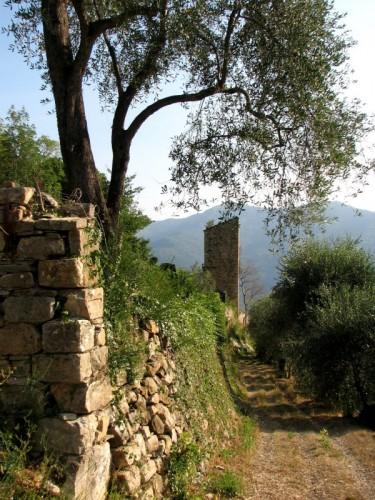 Pontedassio - Castello di Bestagno 2