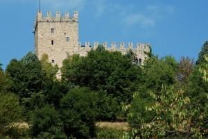 Baiso, il castello