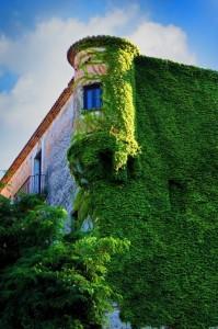 La natura contro il castello di Guarrazzano