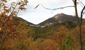 Monteacuto