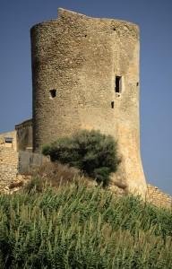 """"""" Torre Gaffe """""""