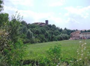 Il Castello di Collegno