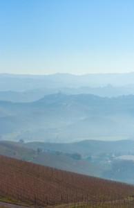 Colline delle langhe nella nebbia del mattino