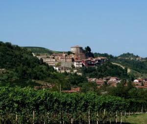 Tra le vigne di Castellinaldo